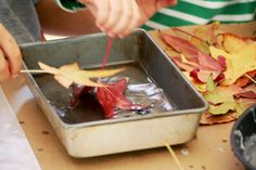 Picnics in the Park: Thanksgiving Week! How to Make Waxed Leaves