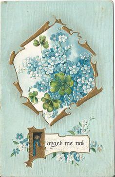 Blue Forget Me Nots & Green Shamrocks The Language of Flowers Vintage Postcard by postcardsintheattic on Etsy