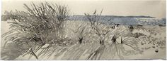 ✨  Eva Pietzcker, German (*1966) - Gräser am Strand bei Flügge, Holzschnitt 20iger Auflage 67 x 24 cm ::: Grass on the Beach near Flügge, Fehmarn Island/Baltic Sea, Germany, Colour Woodcut