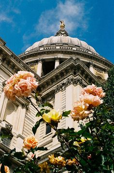 st paul's cathedral, #london