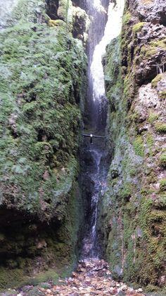 Cascata di Tret (Italy): Top Tips Before You Go - TripAdvisor