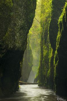 morethanphotography ll Exquisite Photography ll So Beautiful ll Nature  The Canyon by JeffHobsonPhotography