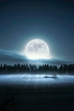 """""""Everyone is a moon , and has a dark side which he never shows to anybody """". Mark Twain"""