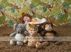 Newborn baby infant boy girl Lion hat and diaper cover set photo prop costume Halloween choices