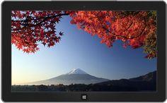 Des scènes traditionnelles de l'automne au Japon.