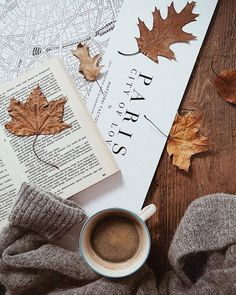 Reading in the autumn
