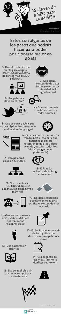 15 claves de SEO para Dummies #infografia