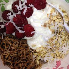 Breakfast bowl: vanilla Greek yogurt, raspberries, all bran, no added sugar muesli, sprinkle of shredded coconut.