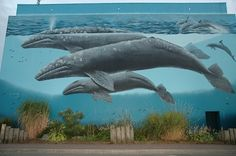 The Whaling Wall in White Rock, B.C Was there watching him paint it! Grew up In White Rock. So much fun in the Vancouver City, Vancouver Island, Wyland Art, Wale, Walled City, Beautiful Park, Whale Watching, Surrey, Sea Creatures