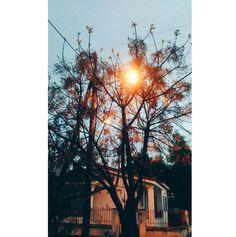 Dark Photography, World Photography, Wallpaper Pictures, Nature Wallpaper, Girly Pictures, Nature Pictures, Aesthetic Pastel Wallpaper, Aesthetic Wallpapers, Love Photos