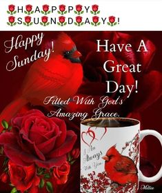Good Morning Beautiful Pictures, Morning Blessings, Amazing Grace, Happy Sunday, Good Day, Blessed, Mugs, Buen Dia, Good Morning