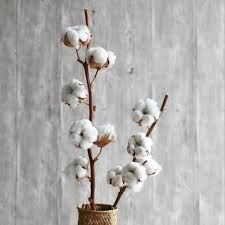 Cotton tree branch country natural cotton tree branch flower flower club club living room wedding shooting props home decoration Brown Bottles, Bottles And Jars, Glass Storage Jars, Jar Storage, Faux Flowers, Dried Flowers, Nordic Chic, Cotton Plant, Flower Branch