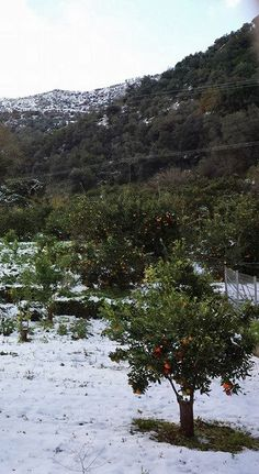 Snow in Chania! Happy New Year from Crete Crete, Winter White, Winter Wonderland, Most Beautiful, Snow, Mountains, Awesome, Places, Happy