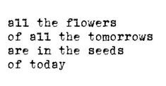 All the flowers of all the tomorrow's are in the seeds of today.