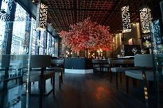 Tattu - Chinese Restaurant /Spinningfields / Manchester