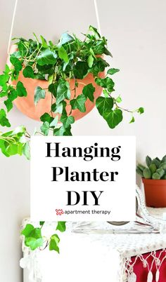 Get On the Plant Trend With These 10 Easy DIY Hanging Planters - Modern Design Hanging Plants Outdoor, Diy Hanging Planter, Diy Planters, Indoor Plants, Inside Garden, Shade Plants, Indoor Garden, House Plants, Easy Diy