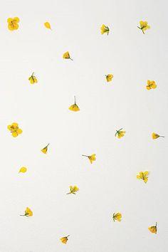 봄을 기억하는 방법 : 네이버 매거진캐스트