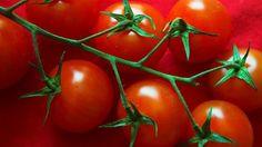 Salat med cherrytomater