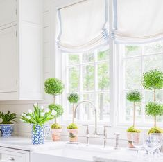 Bungalow Blue Interiors - Home - inspired: sarah bartholomew designs | beautiful relaxed roman shades edged in pale blue-gray look perfect in this classic white kitchen with topiaries. What could be better?