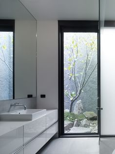 Ross Street Residence bathroom by B.E Architecture looks onto the cherry tree in the central courtyard