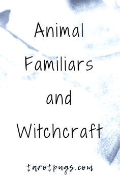 (FAV) Find out how to work with animal familiars in witchcraft - physical and spirit familiars. Wicca For Beginners, Witchcraft For Beginners, Wiccan Witch, Wicca Witchcraft, What Is A Witch, Animal Spirit Guides, Spirit Animal, Traditional Witchcraft, Baby Witch