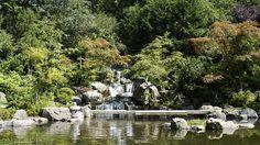 (Kyoto Gardens, Holland Park - © Andrew Brackenbury)