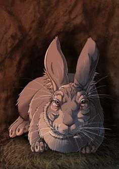 Threarah, the old Chief rabbit of the Sandleford Warren from the chapter of Watership Down. I always imagined him a lot like rabbit version of the '. Watership Down - The Chief Rabbit Watership Down Movie, Rabbit Art, Bright Eyes, Mythical Creatures, Amazing Art, Fantasy Art, Beautiful Pictures, Lion Sculpture, Old Things