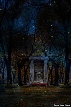 Enchanted Forest all the glamour of faeryland