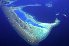 Maldivian Atoll Aerial Journey Around Maldives Photograph by Jenny Rainbow Aerial Photography, Fine Art Photography, Wood Print, Maldives, My Images, Around The Worlds, Journey, Rainbow, Prints