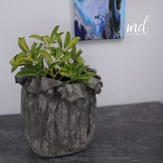 Newest Pics Soy Candles concrete Style Soy Candles usually are a very good approach to select through paraffin candles which have petroleum Diy Cement Planters, Cement Flower Pots, Indoor Planters, Modern Planters, Cheap Planters, Recycled Planters, Ceramic Planters, Hanging Planters, Rustic Planters