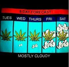 5 day forecast ;-)
