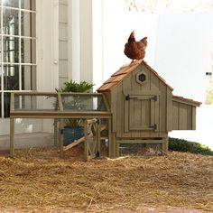 chicken coops for suburban homes - Google Search