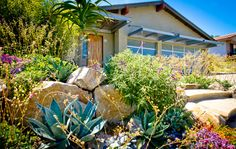 The use of rock, stone, native plants, and succulents transformed the curb appeal of this Del Mar home.