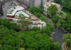 Condesa district, Mexico city Mexico Vacation, Mexico Travel, México City, Places Ive Been, Scene, Culture, Memories, Mexico City, Rome