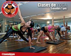 Yoga Sweat Gym / Martes, jueves y sábados. + Saludable ¡Imposible! #Salud #Nutrición #Cardio #Musculacion #Culturismo #Fitness #Gym #ComeSano #SweatGym #SoySweatGym #TerritorioSweatGym #MrSweat #SweatGymxVenezuela