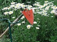 Image result for Garden Hoe