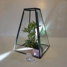 Beveled Glass Terrarium Recycled Beveled by JewelsInTheGarden, $69.00