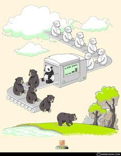 How GOD made panda bears