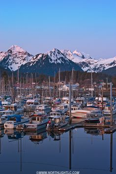 Quiet evening in Seal Cove Harbor, Sitka, Alaska, USA (my birthplace)