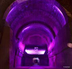 Pionnier des vins à fines bulles de Loire (Saumur brut et Crémant de Loire), Jean Baptiste Ackerman fonde en 1811 son illustre Maison dans des caves spectaculaires creusées dans le tuffeau.