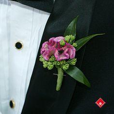 celosia with sedum./ centralflweddingflowers/ www.callaraesfloralevents@yahoo.com