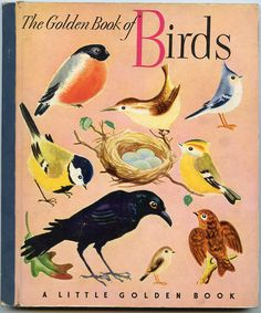 Little Golden Book #13- The Golden Book of Birds  1943  First Edition (original cover w/blue spine)