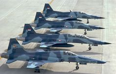Northrop F-5 Tigers from the USAF and the Indonesian Air Force.