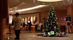 Wing Bay Otaru and Otaru Minato Marina. Otaru, Feather, Wings, Christmas Tree, Holiday Decor, Fun, Travel, Home Decor, Teal Christmas Tree