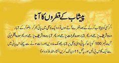 Urine problem Duaa Islam, Allah Islam, Islam Quran, Islamic Dua, Islamic Quotes, Dua For Health, Eid Mubarak Quotes, Quran Sharif, Quran Pak