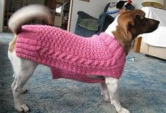 The pattern is written for a medium sized dog. However, the knitter is encouraged to measure the dog it is intended for as the knitting progresses. I wrote the pattern to support the Humane Society (aka Animal Allies). Please make either a sweater donation or a small financial donation to your local Humane Society!