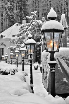 Snow covered lamp posts