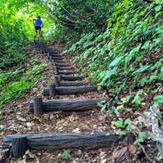 Running Inspiration, Garden Bridge, Trail, Stairs, Outdoor Structures, Nature, Stairway, Naturaleza, Staircases