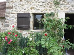 """""""New"""" window made out of a discarded door frame by yours truly. Recycling are us! In the meantime, rose bushes come to maturity"""