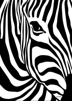 How fast is a zebra? An adult zebra can run at 64 km/h mph) when galloping at full speed. Both Grevy's zebra and Burchell's zebra have this same top speed. Zebra are slower than horses but can run in a zigzag pattern to avoid predators. Arte Zebra, Zebra Kunst, Zebra Art, Zebra Drawing, Zebra Painting, White Art, Black And White, Art Watercolor, Lion Print